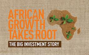 african investment story
